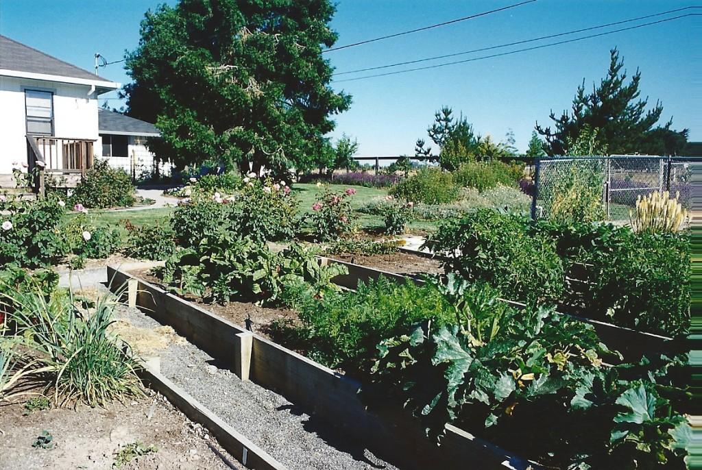 CDPC Landscape Architecture - Hodgins