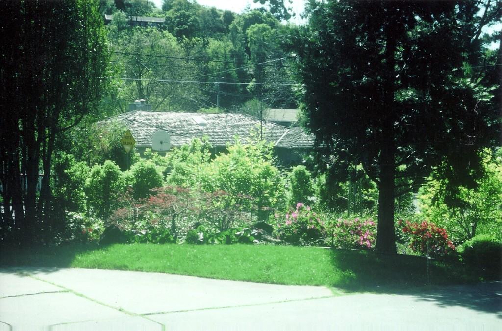 CDPC Landscape Architecture - Miller